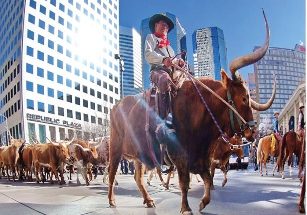 National Western Stock Show_s_credits Steve Crecelius